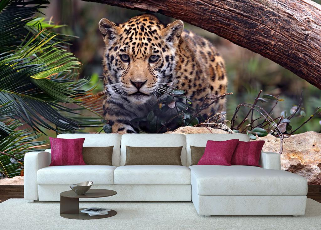 Custom made Tiger photomural animal wallpaper