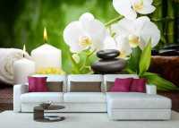 Фото: Фотообои для интерьера Цветы