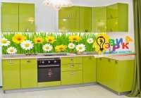Фото: Кухонные скинали Ромашки Виниловая основа