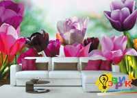 Фото: Фотообои текстура декоративная штукатурка на заказ