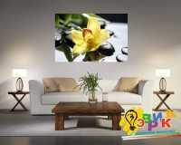 Фото: Картина на холсте Цветы Орхидеи 600х900