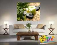 Фото: Картина на холсте 500х500 Орхидея Спа