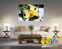 Фото: Модульные картины Орхидея