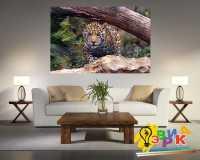 Фото: Картина на холсте Крадущейся леопард