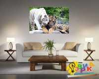 Фото: Картины на холсте Тигры