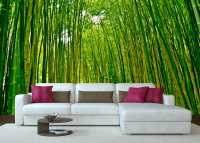 Фото: Фотообои Бамбуковая роща