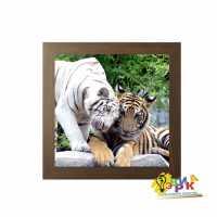 Фото: Постеры для интерьера Тигры