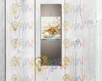 Фото: Магниты на холодильник виниловые Ракушки