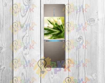 Фото: Магниты на холодильник виниловые Тюльпаны