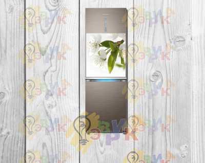 Фото: Магниты на холодильник виниловые Яблоня