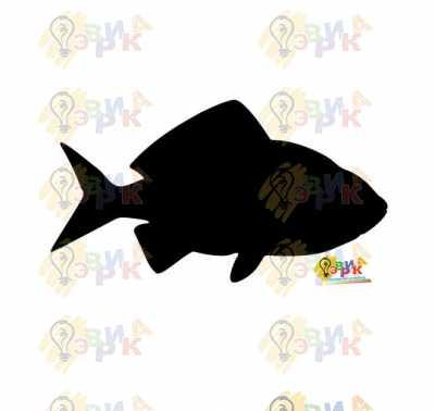 Фото: Меловая доска фигурная Рыба