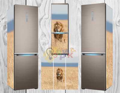 Фото: Дизайнерские наклейки на холодильник Лев