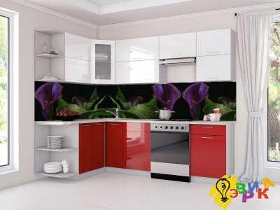 Фото: Фартук для кухни из пластика Калы